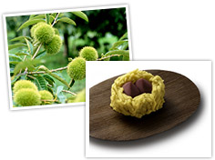 http://giftjap.info/images/articles/wagashi/art_pi_002.jpg