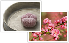 http://giftjap.info/images/articles/wagashi/art_pi_004.jpg
