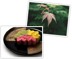 http://giftjap.info/images/articles/wagashi/art_pi_005.jpg