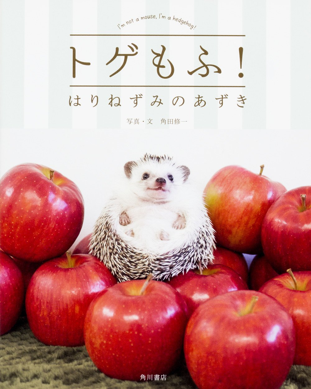Togemofu hedgehog of red beans