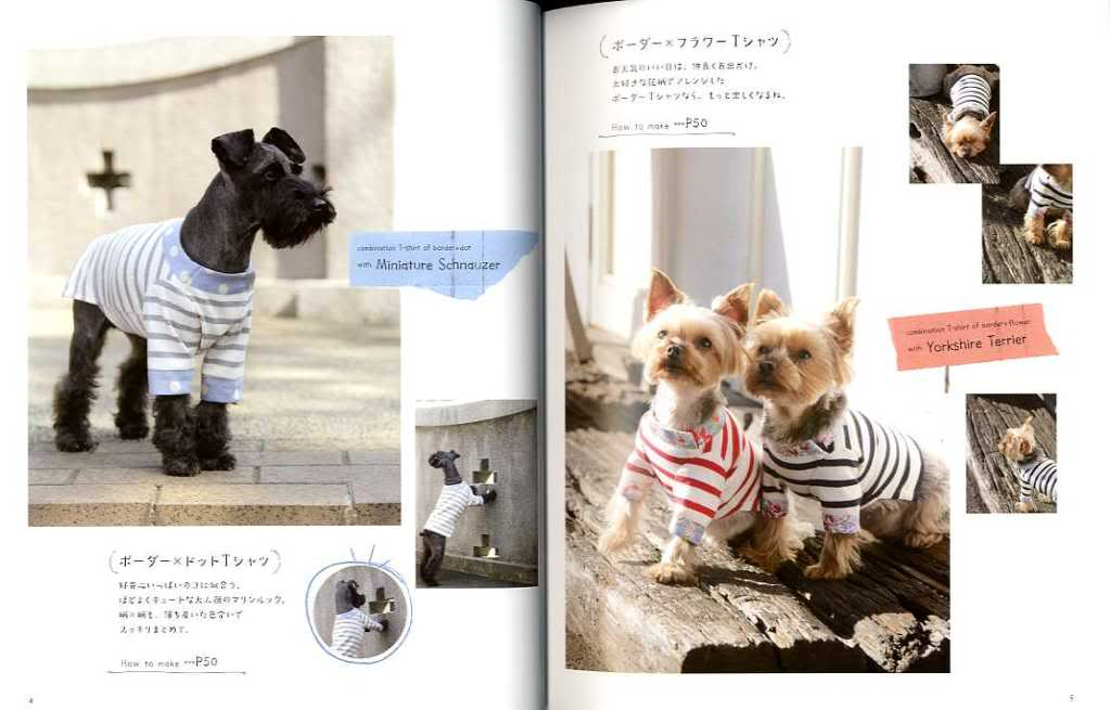 Nice and Cute Dog Clothes