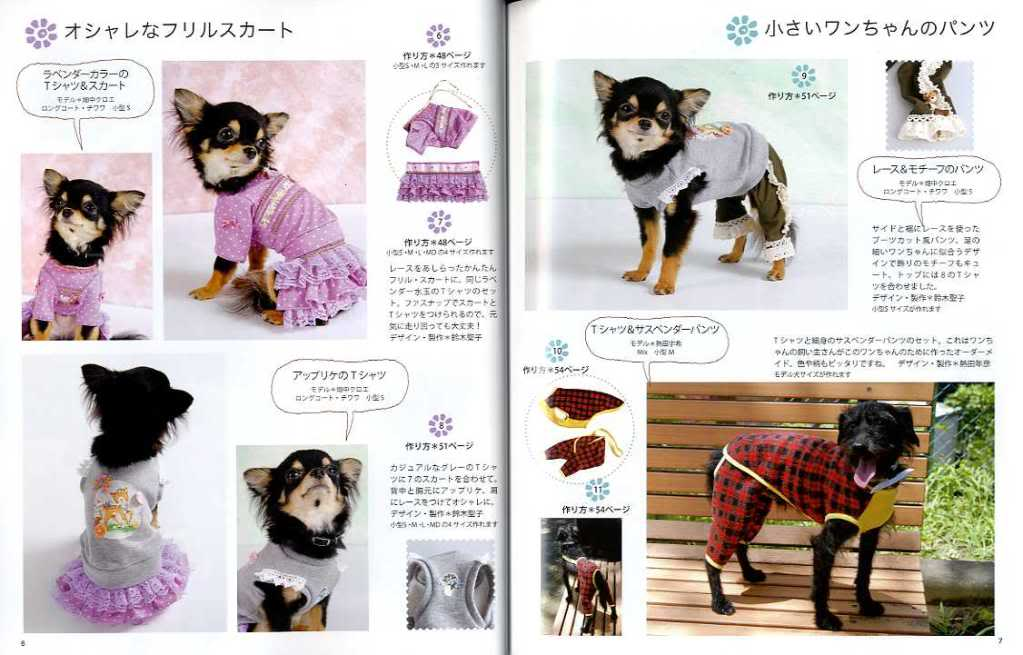 Clothing & Accessories dog